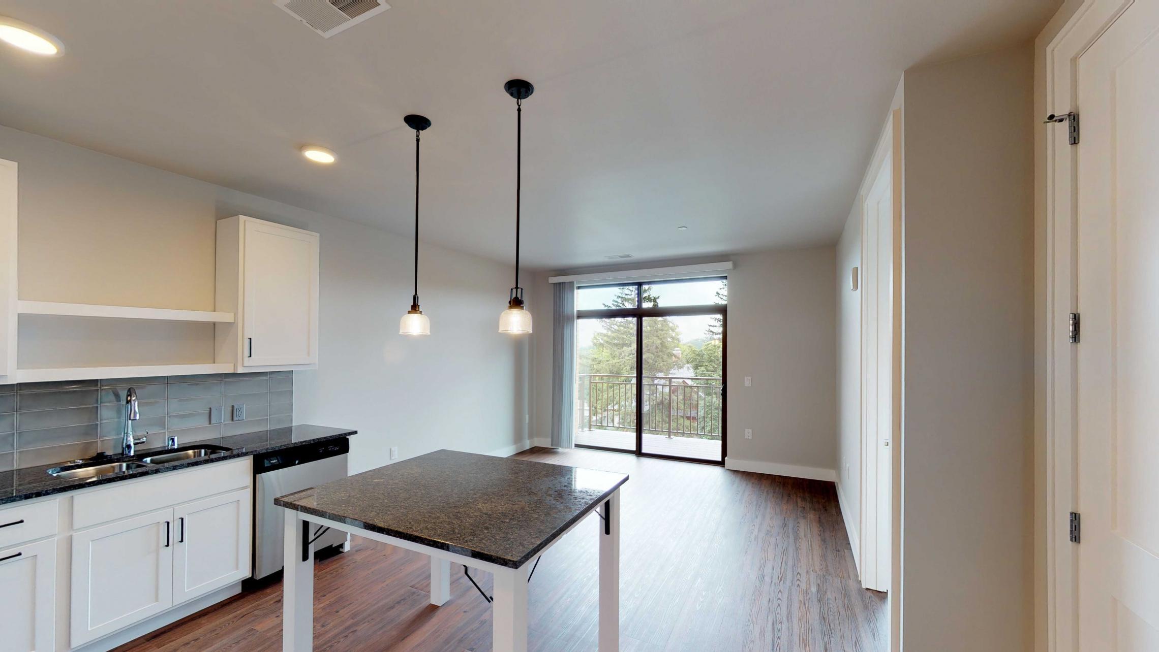 1722-Monroe-Apartment-One Bedroom-Modern-Luxury-Kitchen-Design-Living.jpg