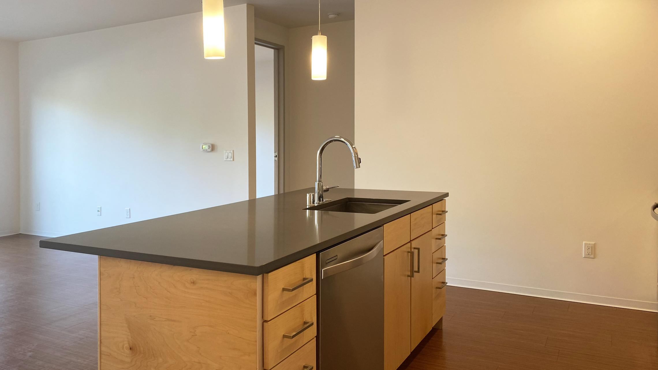 SEVEN27-at-The-Yards-Apartment-116-One-Bedroom-Modern-Upscale-Luxury-Design-Radiant-Heating-Fitness-Lounge-Fireplace-Courtyard-Downtown-Madison-Cats-Dogs-Lifestyle-Natural-Light