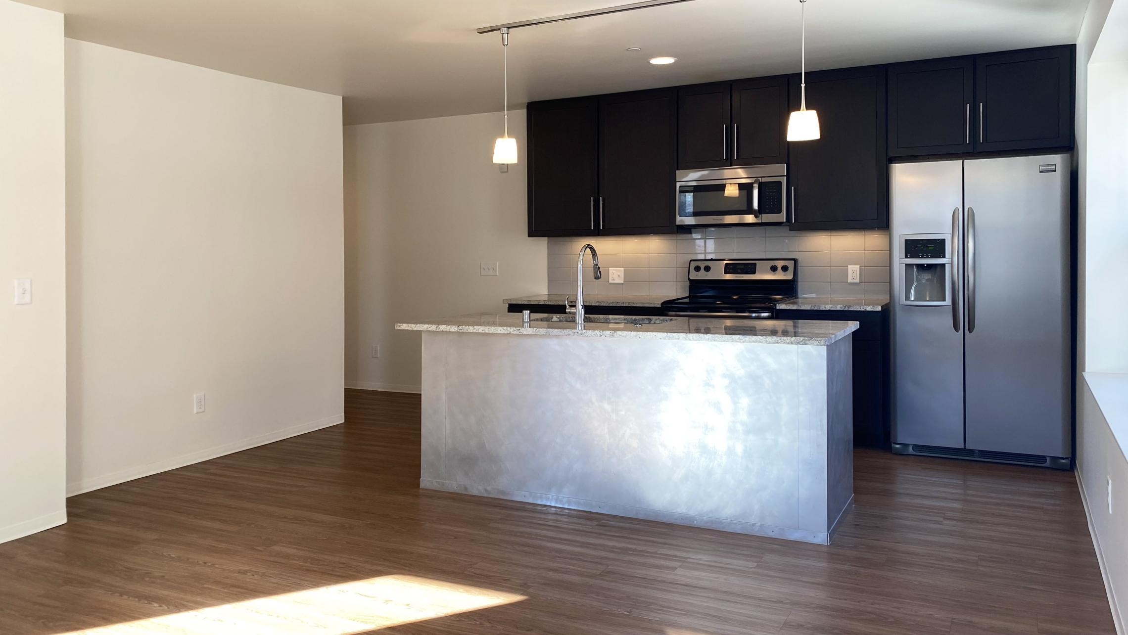 Capitol-Hill-Apartment-307-One-Bedroom-Downtown-Capitol-Lake-View-Modern-Upscale-Radiant-Heating-Kitchen-Living-Bathroom-Lifestyle-Madison-Home-Cats