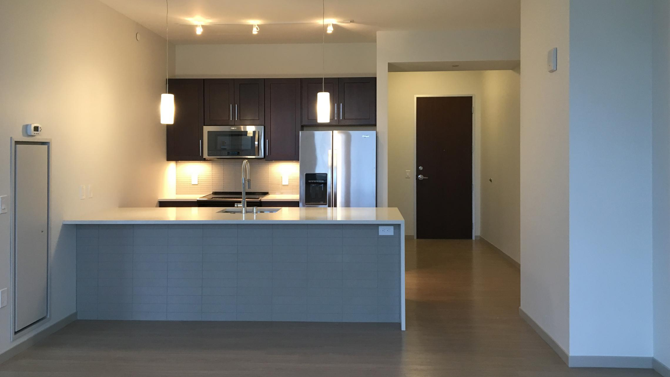 The-Pressman-Apartment-911-Upsclae-Modern-Downtown-Lake-View-Top-Floor-Amenities-Fitness-Lounge-Office-Luxury-Finishes-Design-Lifestyle-Capitol-Square