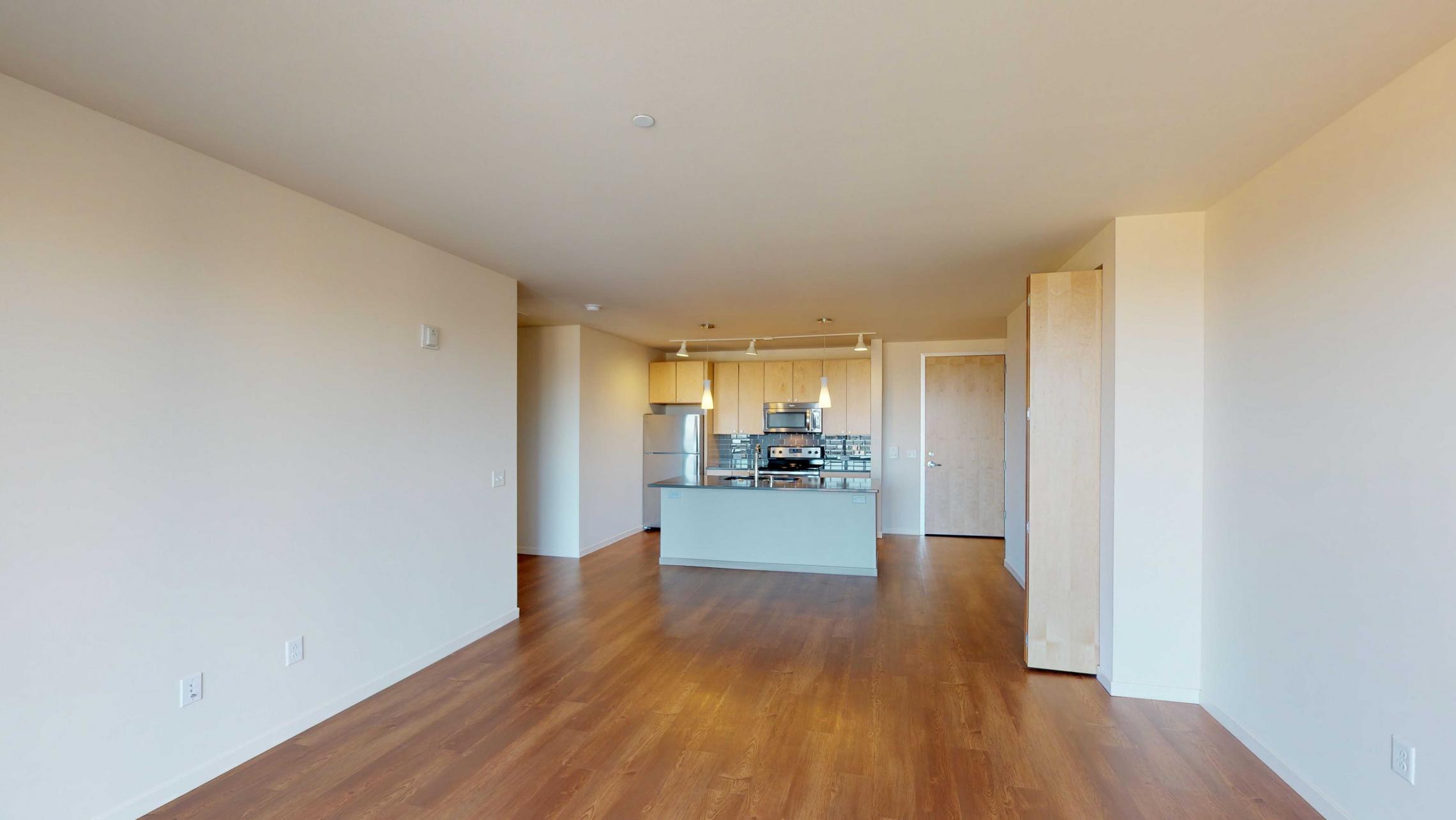 Nine-Line-Apartment-419-kitchen-appliances-modern-lake-view-downtown-Capitol-Madison-lifestyle