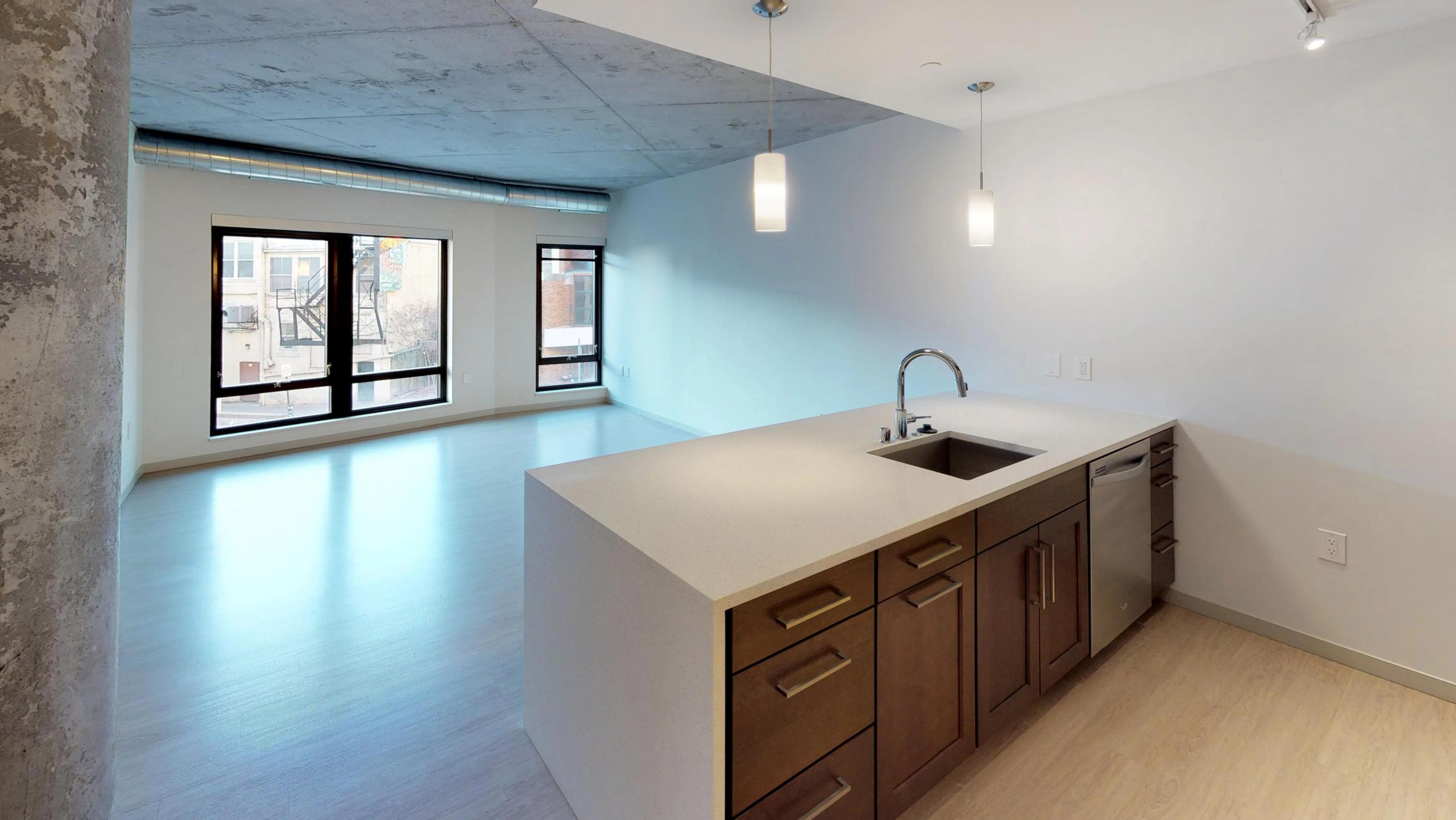 Pressman-Apartment-217-One-Bedroom-Luxury-Downtown-Upscale-Modern-Downtown-Madison-Capitol-Square