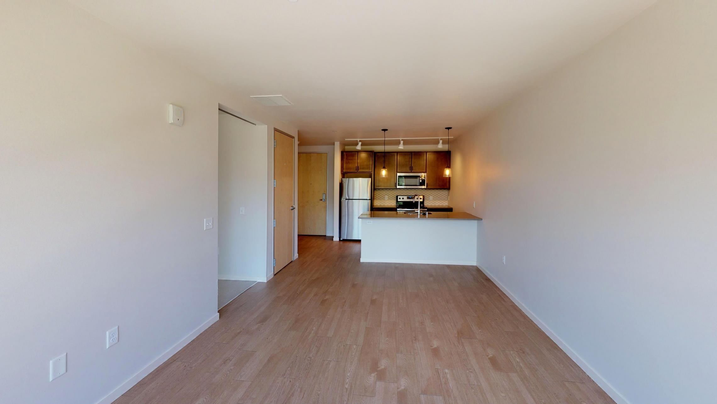 Quarter-Row-Apartments-Downtown-Madison-Capitol-Lake-Views-Balcony-Sun-Terrace-Courtyard-Fireplace-Dogs-Cats-Modern-Upscale-Apartment-One-Bedroom