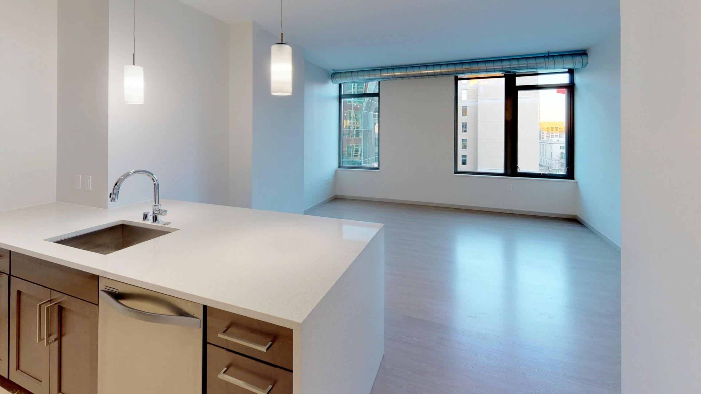 The-Pressman-Apartment-705-One-Bedroom-Modern-Upscale-Luxury-Downtown-Madison-Capitol-Square-Lifestyle-Home.jpg