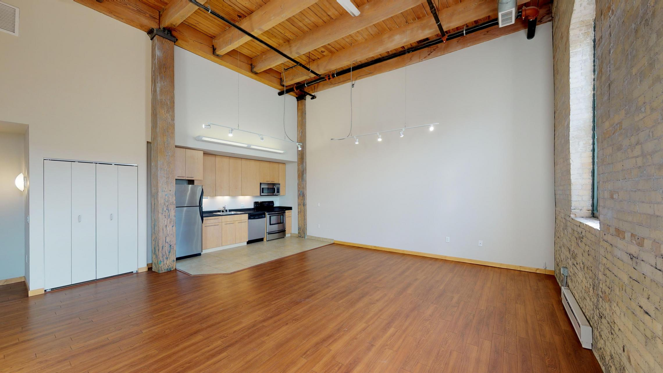 Tobacco-Lofts-Apartments-Lofted-Design-Unique-Upscale-Stunning-Sunshine-Cats-Lofted-Brick-Garage-Courtyard-Grill-Fitness-Historic-Yards-Warehouse-Apartment- E204-Lofted-Two-Bedroom