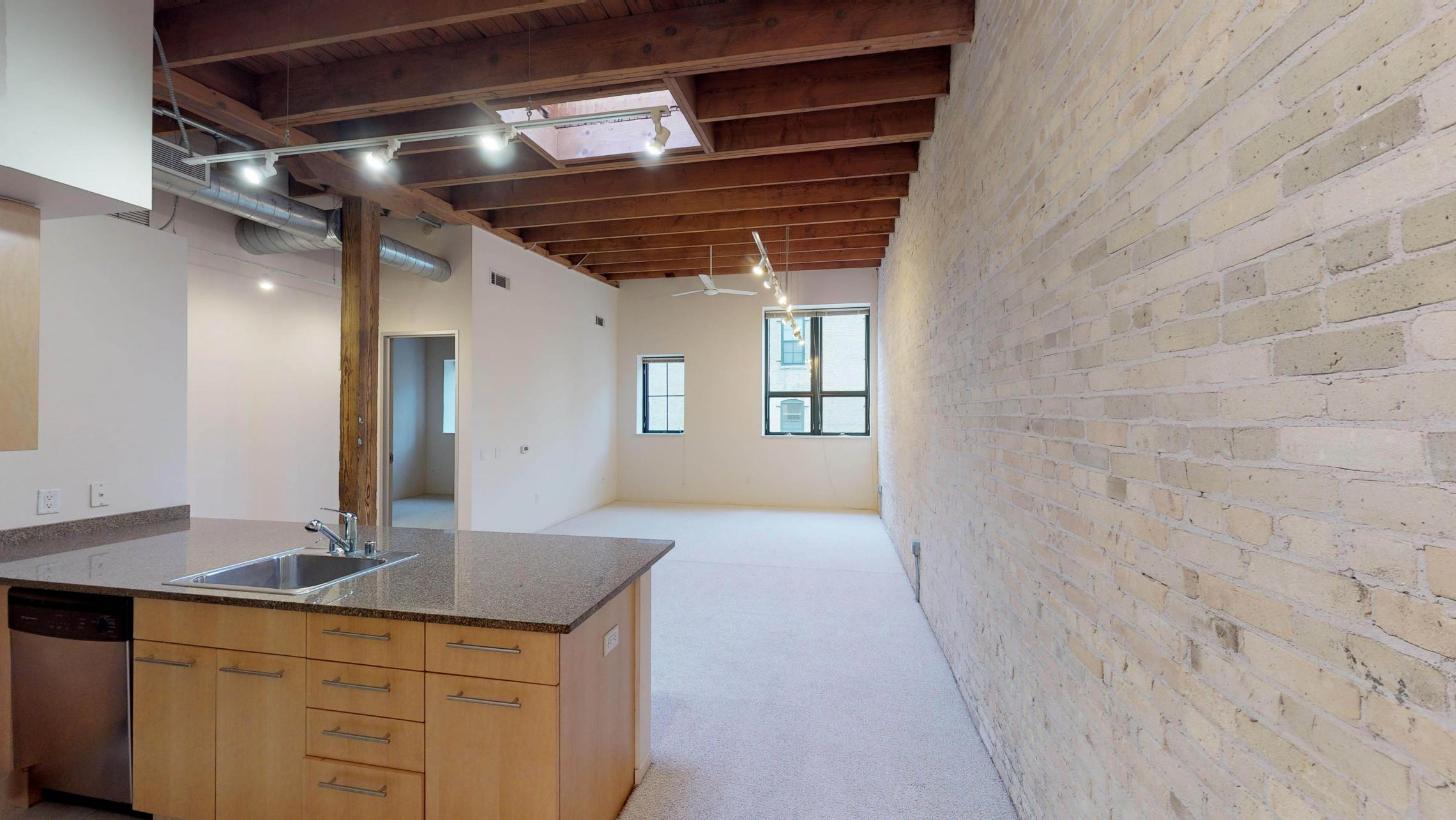 Tobacco-Lofts-Apartments-Lofted-Design-Unique-Upscale-Stunning-Sunshine-Cats-Lofted-Brick-Garage-Courtyard-Grill-Fitness-Historic-Yards-Warehouse-Apartment- W209-One-Bedroom-Skylight