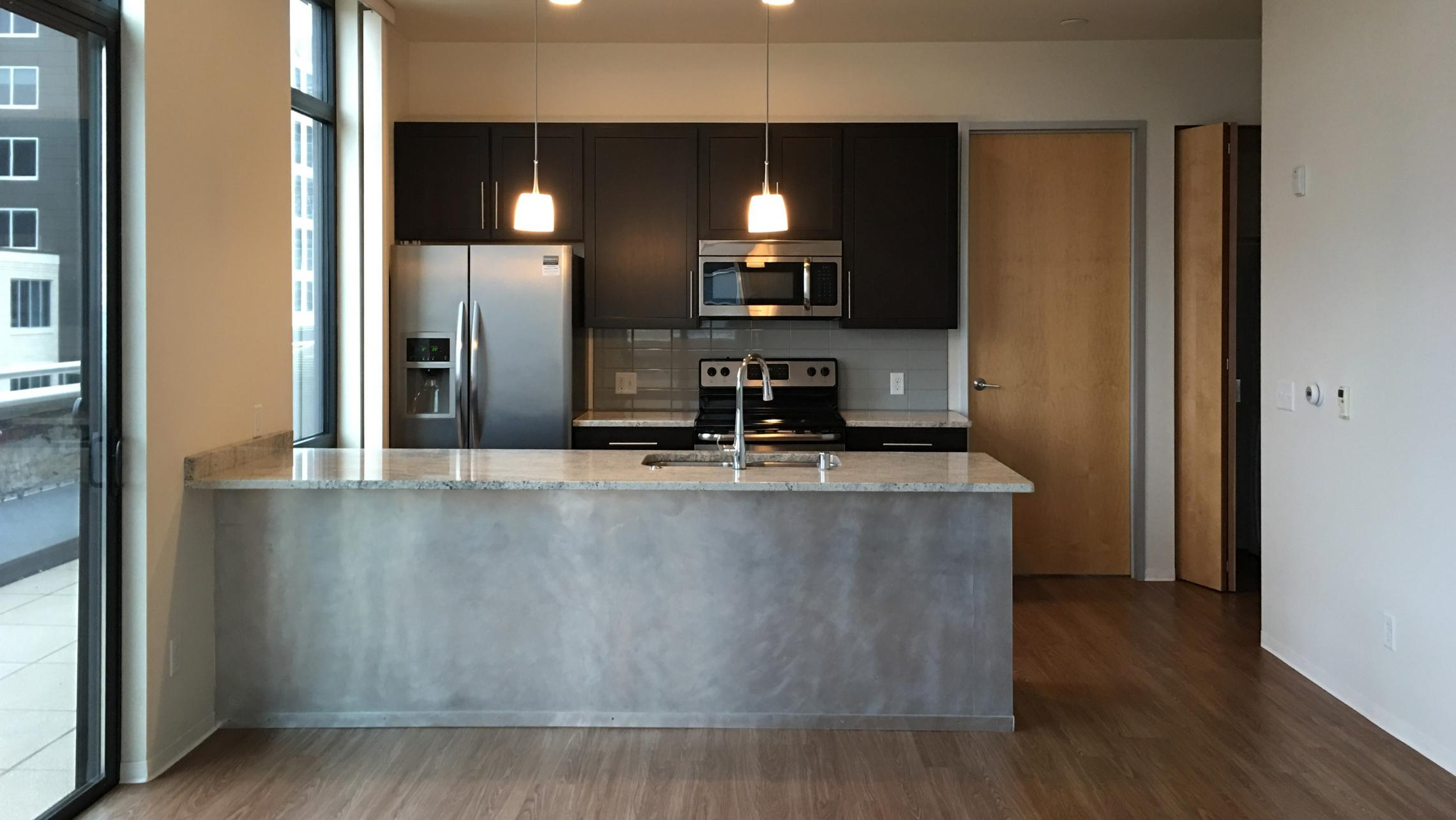 ULI Capitol Hill - Kitchen with High End Finishes