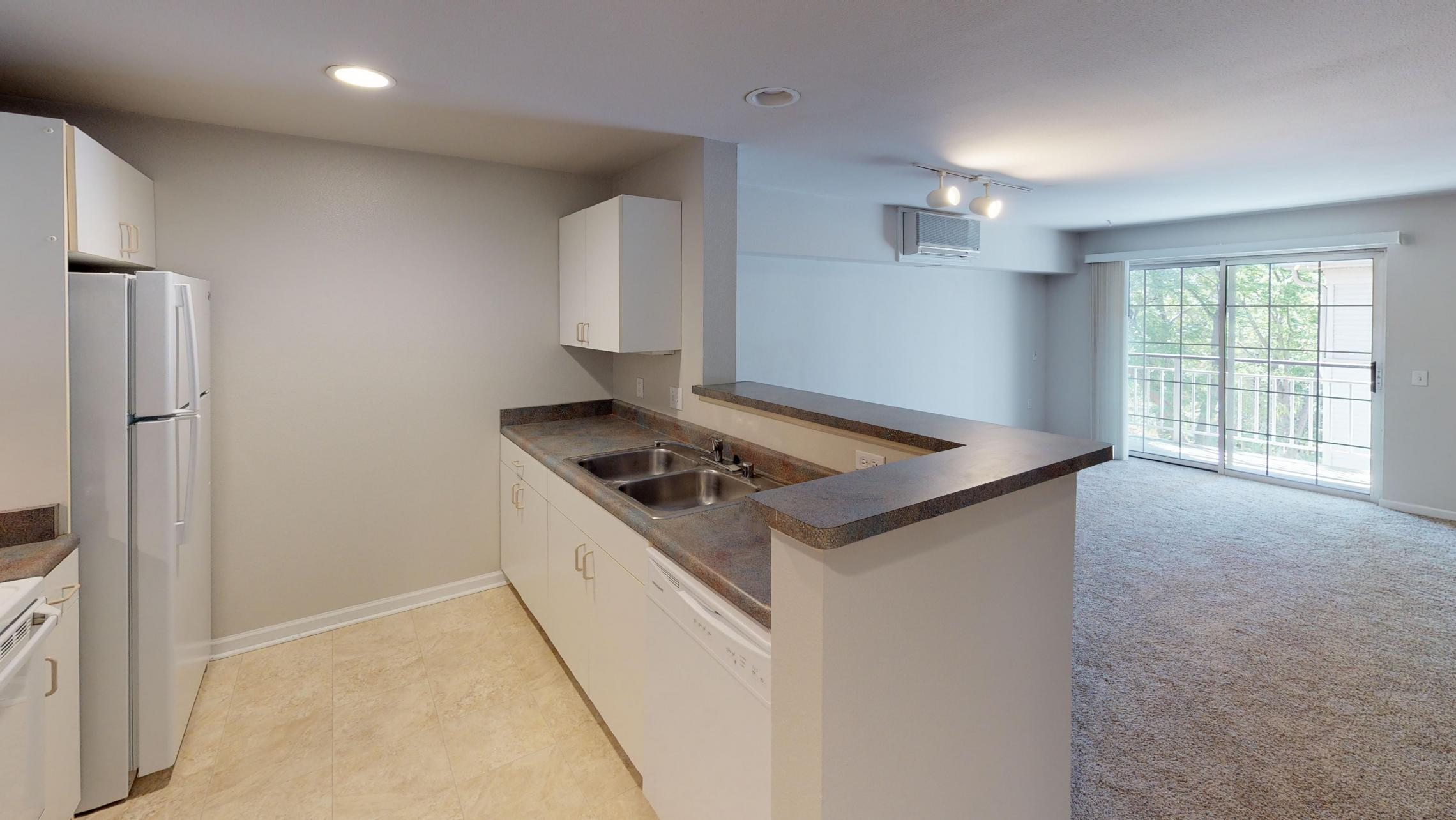 Wilson-Bay-Apartment-309-Studio-Downtown-Madison-Kitchen-Living-Balcony-Patio.jpg