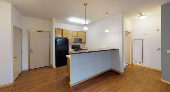 The-Depot-Apartment-1-213-Kitchen-One-Bedroom-Downtown-Madison.jpg